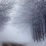 Se déplacer en voiture en hiver : quelques...